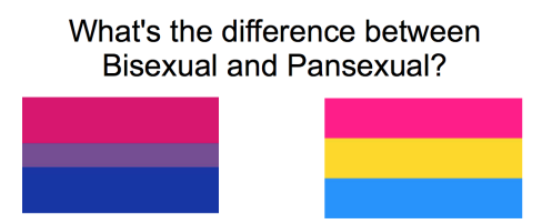 difference between bisexual pansexual